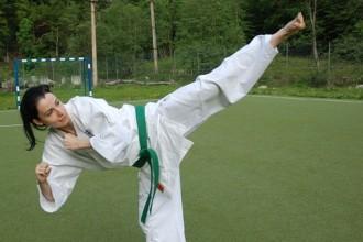 karate pixabay