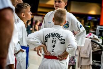 "Eesti Taekwondo Liit Tallinna vaba aja messil ""No vaata 2016"". Foto autor Harry Tiits"